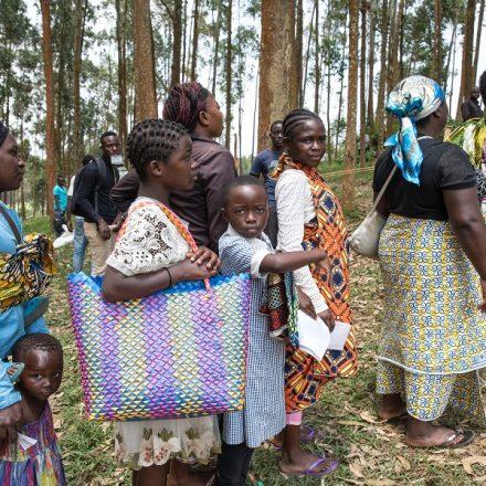 União Africana e FAO discutem como evitar desabastecimento nas mesas do continente