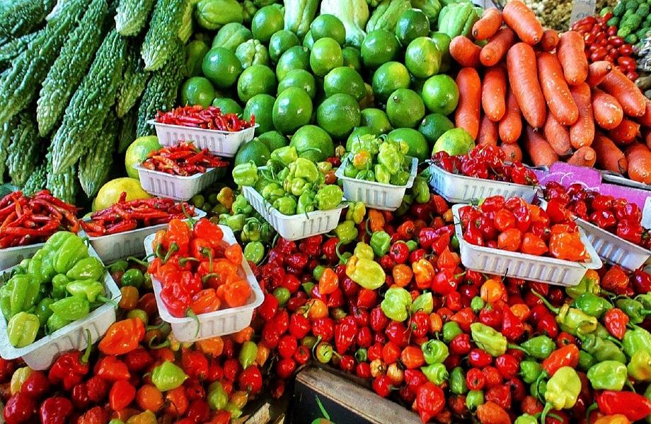 ARTIGO: Por sistemas alimentares sustentáveis no pós-pandemia