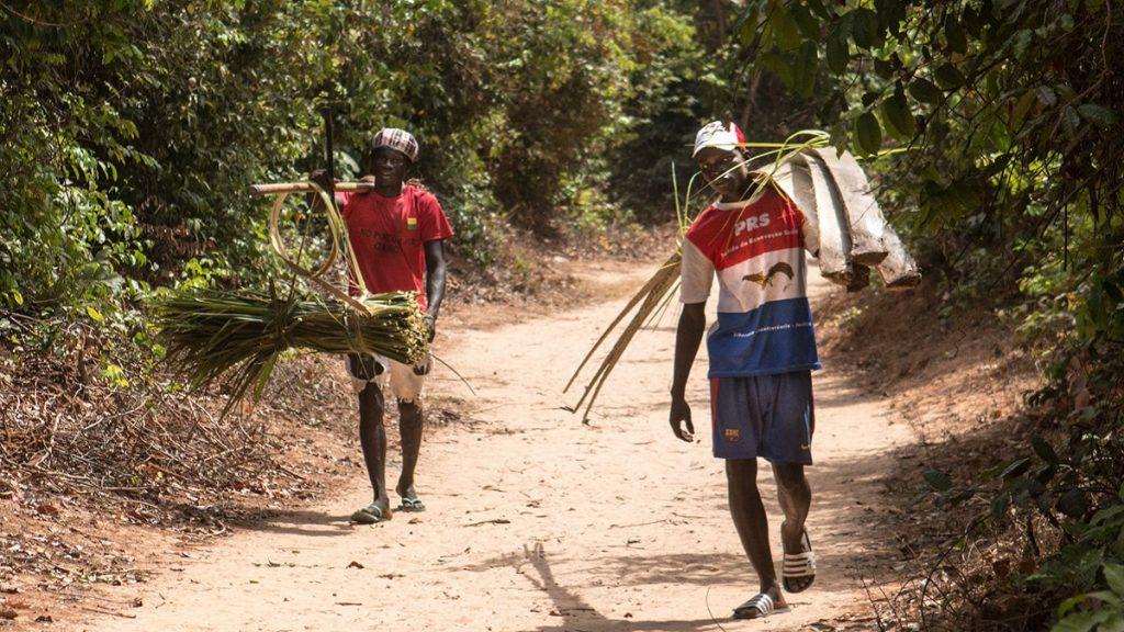 """ONU: """"África precisa de apoio para vencer pandemia"""", diz Guterres"""