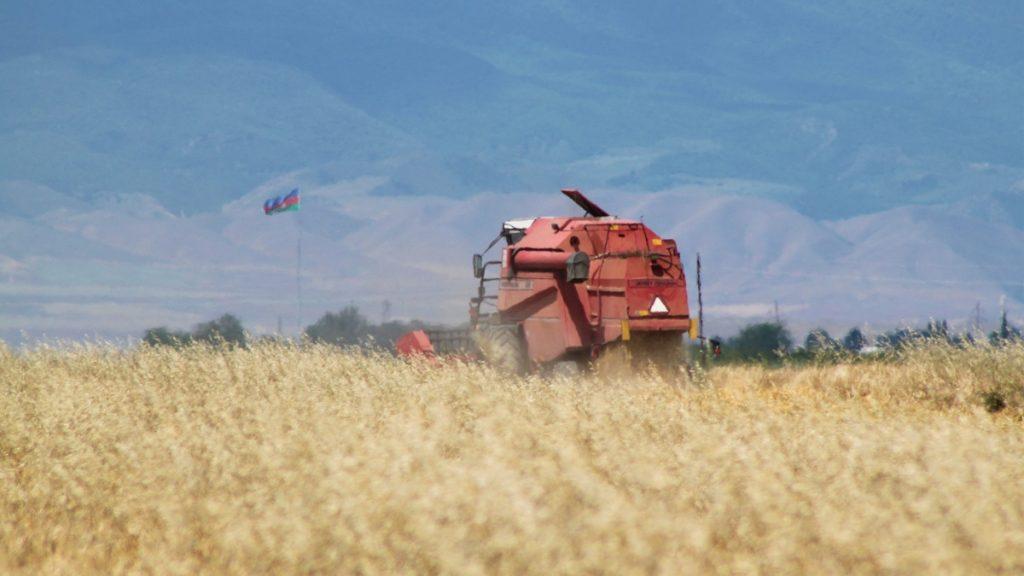 Quatro corporações monopolizam mais de 50% do estoque global de alimentos