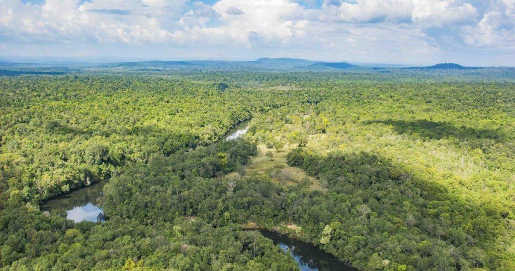 Usina a carvão é nova ameaça ao maior parque nacional do Camboja
